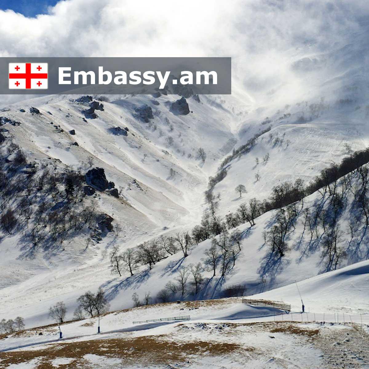 Бакуриани - Отели в Грузии - Embassy.am
